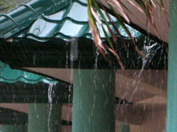 Дождь, металлическая кровля
